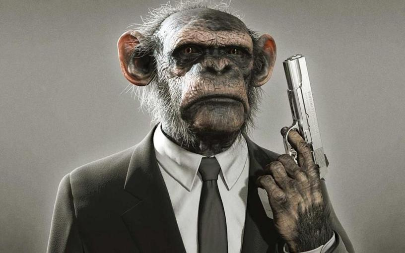 monkey_with_gun.jpg